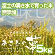 五十鈴園のお米