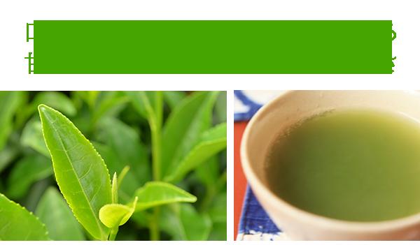 「甘さ」と「まろやかさ」と「味の濃さ」が、口の中に残り柔らかく広がるとても美味しいお茶です。