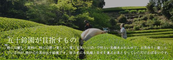 無添加米『あさひの夢』溢れるお天道さまの日差しの下にて、愛鷹山を背に、富士の山より湧きいずる水を頂戴し、丹精こめ育て上げたる「あさひの夢」は、極上の味なり。